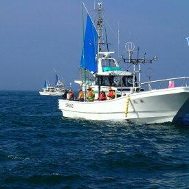 【ふるさと納税】C001 釣り船乗船(1名様)