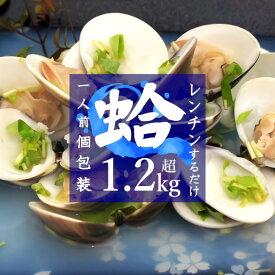 【ふるさと納税】 はまぐり ハマグリ 蛤 国産 1kg超 1.25kg 千葉県産 冷凍 レンチン 送料無料