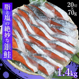 【ふるさと納税】 鮭 切り身 冷凍 1kg超 1.4kg 真空パック 個包装 送料無料 さけ サケ