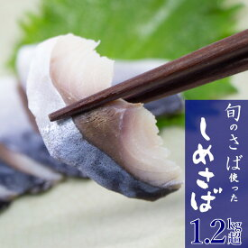 【ふるさと納税】 さば しめさば 寒さば 冷凍 12枚 1.2kg〜1.5kg 個包装 送料無料 鯖 サバ