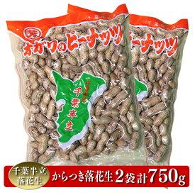 【ふるさと納税】A-5 千葉半立落花生専門店 オガワのピーナッツ からつき落花生(2袋)計750g