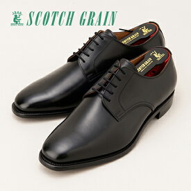 【ふるさと納税】スコッチグレイン紳士靴「アシュランス」NO.3524(ブラック)【ウィズEEE】【特典:靴クリーム等セット】SCOTCH GRAIN ビジネスシューズ メンズ 革靴