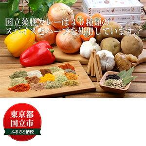 【ふるさと納税】30種のスパイスを使用した国立薬膳カレーセット 【惣菜・レトルト・インスタント・詰め合わせ】