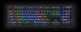 【ふるさと納税】東プレ コンピューターキーボードC Realforce RGB (型式:R2A-JP4G-BK AEAZ05)