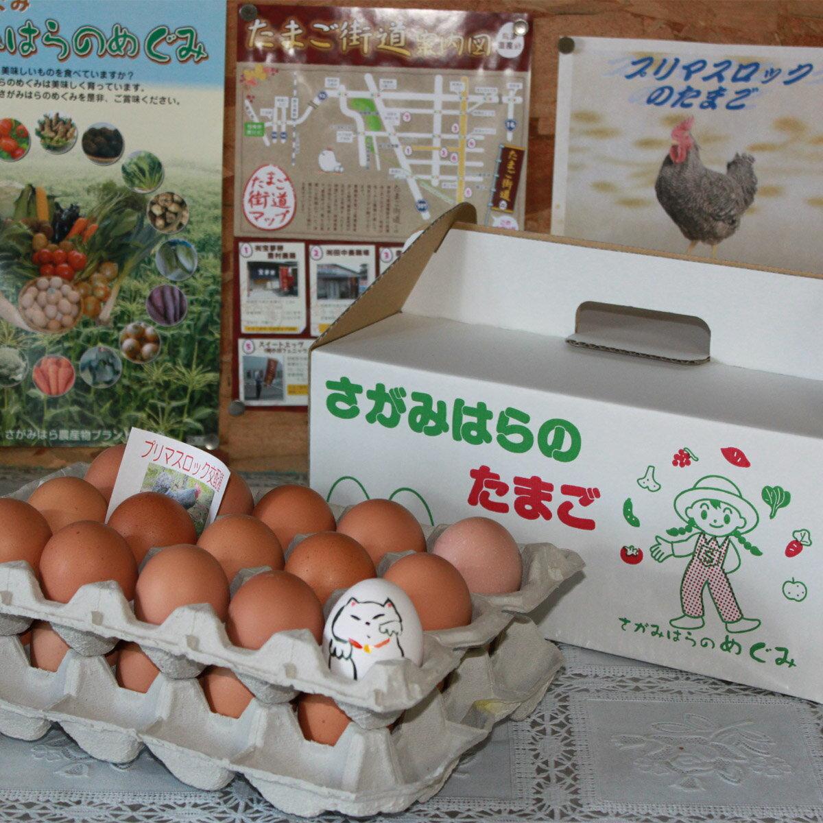 【ふるさと納税】鶏卵 プリマスロック(交配種)の卵 化粧箱入り30個