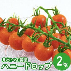 【ふるさと納税】【井出トマト農園】ハニードロップ 2kg 【野菜・ミニトマト】
