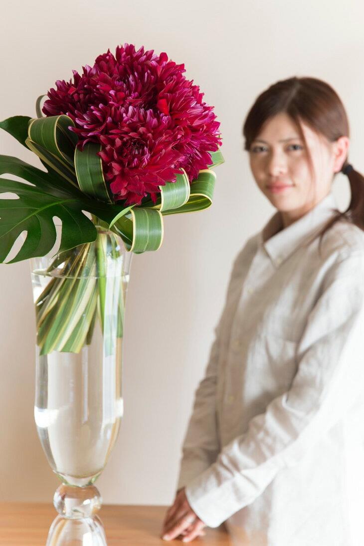 【ふるさと納税】《お花の定期便シリーズ》「毎週」届く、旬のお花(52回/1年間)