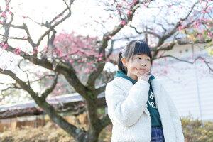 小田原で写真撮影