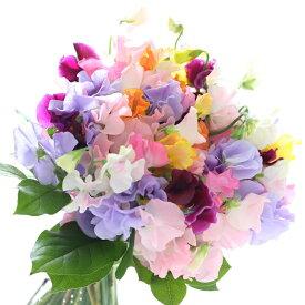 【ふるさと納税】旬のお花で季節の花束