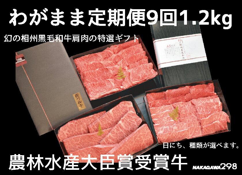 【ふるさと納税】わがまま定期便  幻の相州黒毛和牛肩肉 1.2kg 年に9回お届け!
