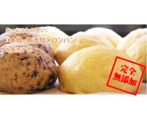 【ふるさと納税】No.009 無添加メロンパン詰め合せ 15ヶ入り / めろんパン チョコ クリーム入り 国産小麦粉 神奈川県 特産品