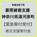 【ふるさと納税】【令和3年7月 豪雨被害支援寄付受付】神奈川県湯河原町災害応援寄付金(返礼品はありません)