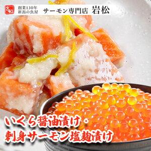 【ふるさと納税】いくら醤油漬け・刺身サーモン塩麹漬け 【加工食品・いくら・魚卵・魚貝類・漬魚・粕漬け】