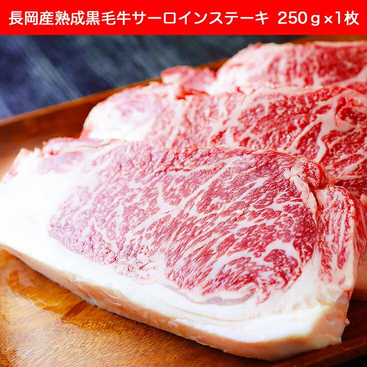 【ふるさと納税】1-223 長岡産熟成黒毛牛サーロインステーキ