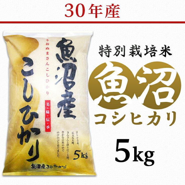 【ふるさと納税】1-420【H30年産】新潟県魚沼産コシヒカリ(長岡川口地域)5kg