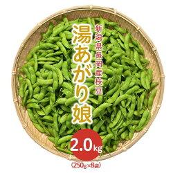 【ふるさと納税】75E-02新潟県長岡産枝豆2.0kg【湯あがり娘250g×8袋入り】