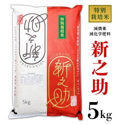 【ふるさと納税】米新之助5kg白米B7-05新潟県長岡産新之助5kg(特別栽培米)