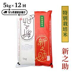 【ふるさと納税】米定期便新之助5kg白米B7-35【12ヶ月連続お届け】長岡産新之助5kg(特別栽培米)