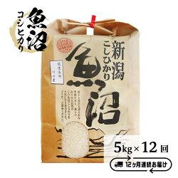 【ふるさと納税】B7-36【12ヶ月連続お届け】魚沼産コシヒカリ5kg(長岡川口地域)