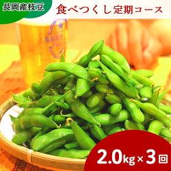 【ふるさと納税】75ET長岡産枝豆【2.0kg×3回お届け】食べつくし定期コース