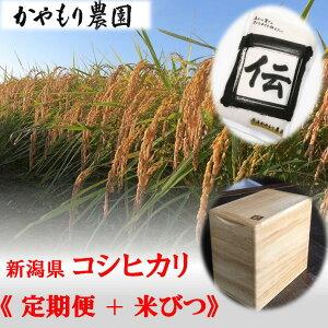 【ふるさと納税】【12回定期便】〈桐製 米びつ付き〉新潟県産 コシヒカリ「伝」 白米 計120kg(5kg真空パック×2袋 12回お届け)