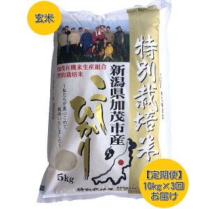 【ふるさと納税】【3回定期便】加茂有機米生産組合の作った特別栽培米コシヒカリ 玄米 10kg×3回お届け(計30kg)