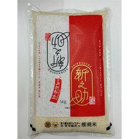 【ふるさと納税】新潟米 新之助5kg