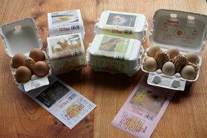 【ふるさと納税】 ひよころ鶏園 の『産みたて平飼い地鶏たまご』のセット(合計30個)