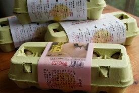 【ふるさと納税】『 平飼い有精卵の食べ比べ10個入×3パック』と『鳥骨鶏のたまご10個』のセット(合計40個)