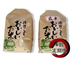 【ふるさと納税】【定期便】旧笹神村産 コシヒカリ 白米 2kg + 玄米 2kg × 4回 定期便