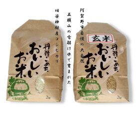 【ふるさと納税】旧笹神村産 コシヒカリ 白米 2kg + 玄米 2kg