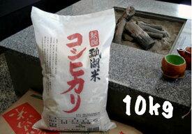 【ふるさと納税】新潟産 コシヒカリ 瓢湖米 10kg