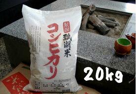 【ふるさと納税】新潟産 コシヒカリ 瓢湖米 20kg