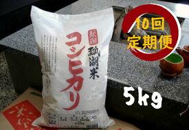 【ふるさと納税】新潟産 コシヒカリ 瓢湖米 5kg × 10回 定期便