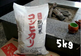 【ふるさと納税】新潟産 コシヒカリ 瓢湖米 5kg