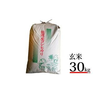 【ふるさと納税】【令和2年産】高島農場 農薬不使用コシヒカリ30kg(玄米) 【お米・コシヒカリ・玄米】