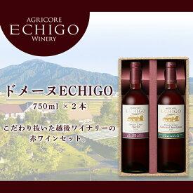 【ふるさと納税】ドメーヌECHIGO 赤ワイン2本セット