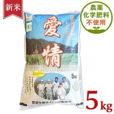 【ふるさと納税】米5kg令和3年白米16-05新潟県胎内産JAS有機合鴨栽培コシヒカリ5kg(精米)