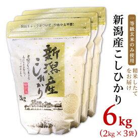 【ふるさと納税】米 白米 令和2年 新米 31-01新潟県産コシヒカリ6kg(2kg×3袋)
