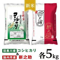 【ふるさと納税】米10kg令和3年白米23-07新潟県旧黒川村産コシヒカリ5kg+新之助5kg