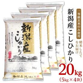 【ふるさと納税】米 20kg 白米 令和2年 新米 31-06新潟県産コシヒカリ20kg(5kg×4袋)
