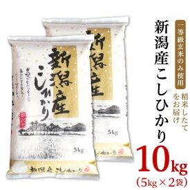 【ふるさと納税】米 10kg 31-07新潟県産コシヒカリ10kg(5kg×2袋)