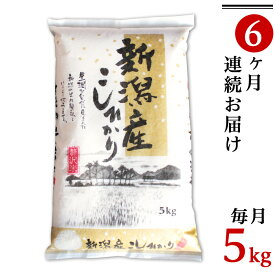 【ふるさと納税】米 定期便 5kg 白米 令和2年 新米 31-12【6ヶ月連続お届け】新潟県産コシヒカリ5kg