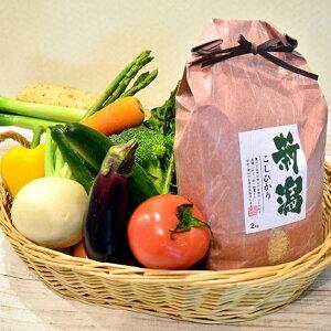 【ふるさと納税】新潟県聖籠産有機米・季節野菜セット≪令和元年産≫