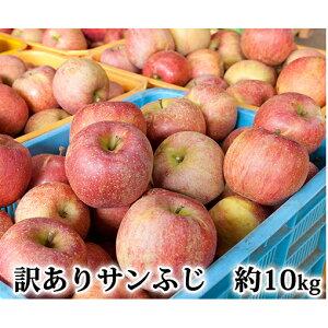 【ふるさと納税】国吉りんご 訳ありサンふじ 約10kg(35〜45玉)家庭用 リンゴ 林檎 自家用 りんご 【果物類・フルーツ・林檎・リンゴ】 お届け:2019年11月上旬〜2020年1月末まで