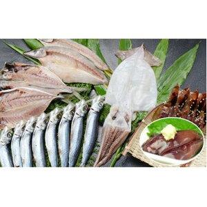 【ふるさと納税】氷見の定置網でとれた干物とほたるいか珍味食べきりセット 【魚貝類・干物・ほたるいか珍味・ホタルイカ塩辛】