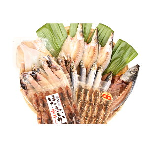 【ふるさと納税】氷見 堀与 地魚一夜干5種とみりん干とほたるいかの素干 【アジ・魚貝類・干物・鯖・サバ】