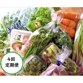 【ふるさと納税】【定期便】氷見里山で育った季節の野菜・果物セット年4回定期便 【定期便・野菜・セット・詰合せ・果物類・フルーツ・詰合せ・調味料・ドレッシング】