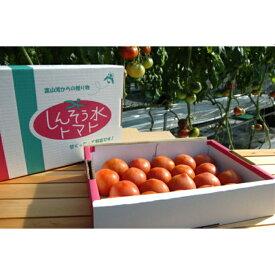 【ふるさと納税】[B30] 旬のフルーツトマト定期便(1.2kg×3回)【予約限定100セット】