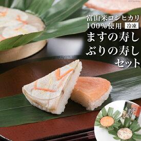【ふるさと納税】冷凍 ますの寿し・ぶりの寿しセット 【押し寿司】